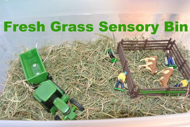 Fresh Grass/Farm theme sensory bin for toddlers.