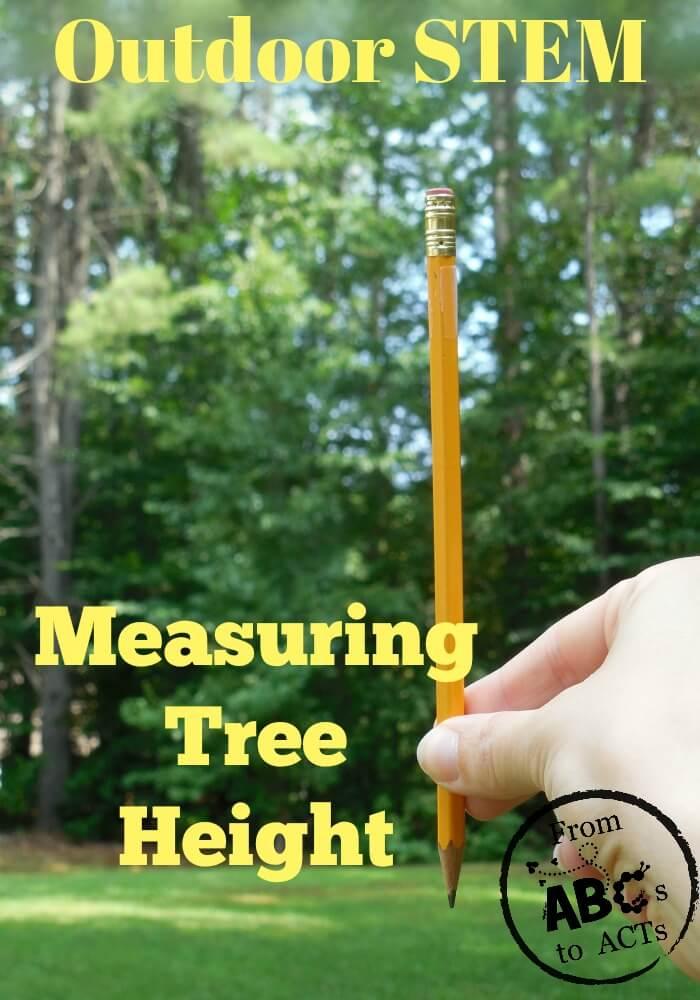 Outdoor STEM: Measuring Trees