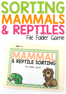 The differences between mammals and reptiles are plenty and they make a fascinating science lesson for little learners! Once you've learned a little bit about them, practice sorting various different animals with this fun file folder game! #FromABCsToACTs