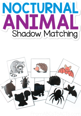 Nocturnal Animal Shadow Matching Cards